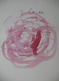 Rosa Canina 50 x 35 cm